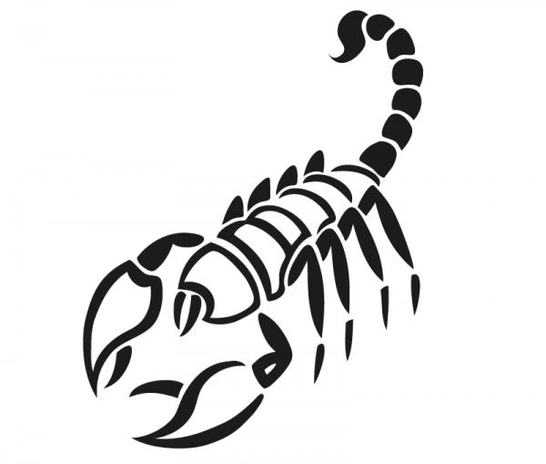 KFZ Aufkleber Scorpius / Skorpion