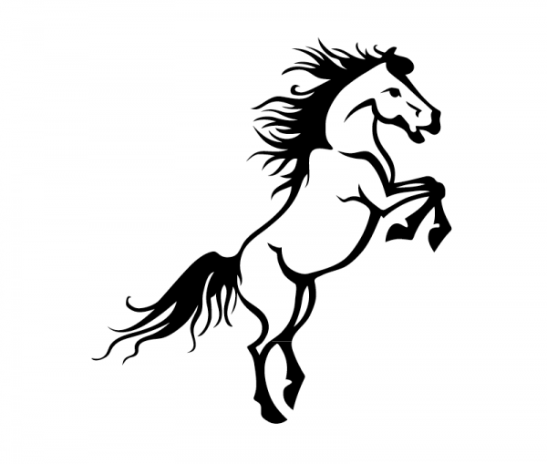 KFZ Aufkleber Steigendes Pferd optional mit Wunschtext