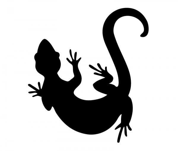 KFZ Aufkleber Gecko optional mit Wunschtext