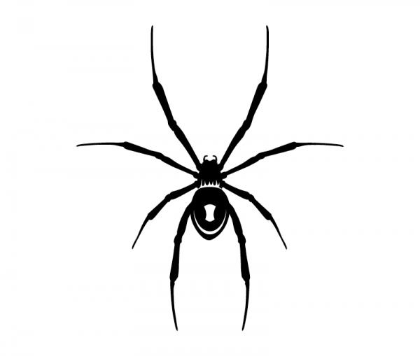 KFZ Aufkleber Schwarze Witwe - Spinne optional mit Wunschtext